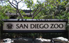 San Diego Attractions Reviews