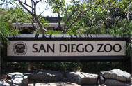 San Diego Zoo Package at California Hotel